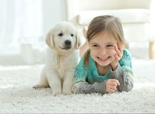 Carpet cleaned and is safe for pets and small children