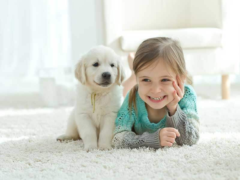 puppy next to child on carpet that was just cleaned with professional stain removal services