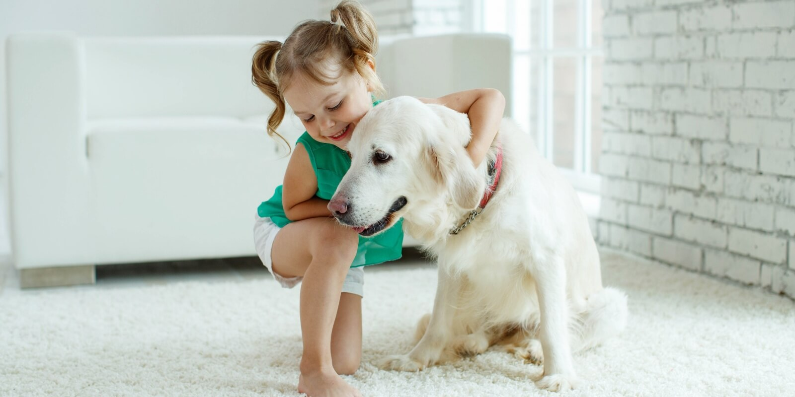 Cute girl with her dog on a clean carpet